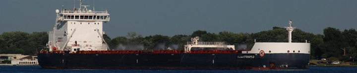 Algoma Strongfield at Detroit
