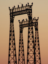 Light towers on old Great Northern dock