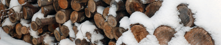 Banner image: wood pile